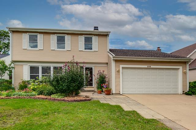206 Knollwood Street, Vernon Hills, IL 60061 (MLS #11229807) :: Schoon Family Group