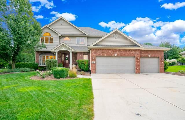 830 Eastwind Drive, New Lenox, IL 60451 (MLS #11229888) :: Littlefield Group