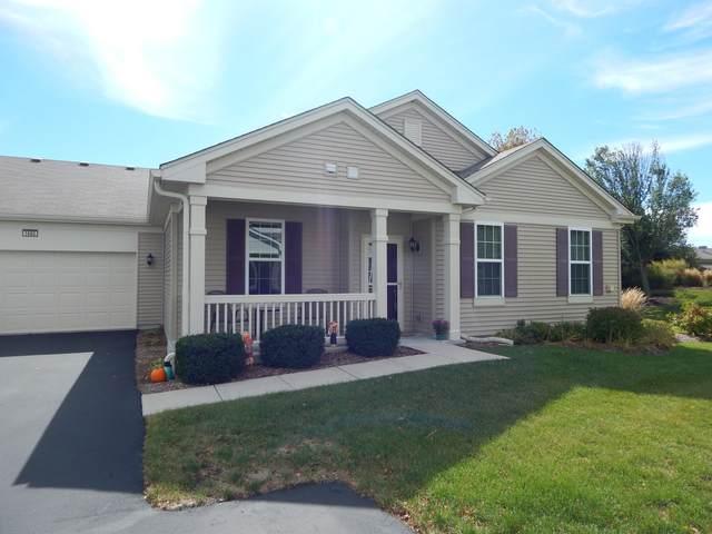 1682 Hannah Lane, Pingree Grove, IL 60140 (MLS #11230038) :: Schoon Family Group