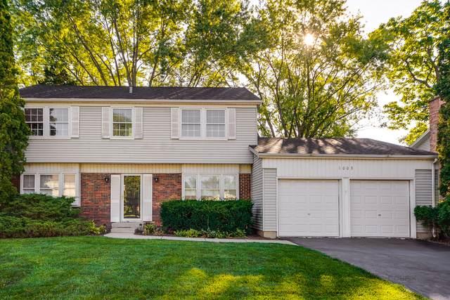 1005 Alden Lane, Buffalo Grove, IL 60089 (MLS #11230352) :: John Lyons Real Estate