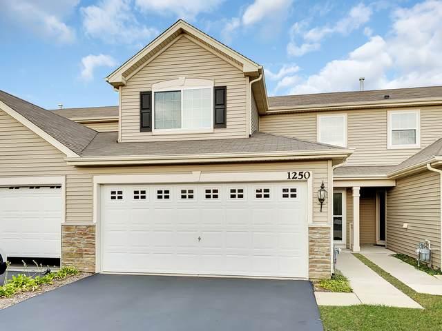 1250 Da Vinci Drive, Hampshire, IL 60140 (MLS #11230891) :: Littlefield Group