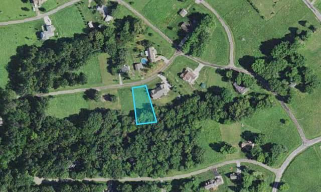 403 Sunnyslope Drive, Varna, IL 61375 (MLS #11231050) :: The Wexler Group at Keller Williams Preferred Realty
