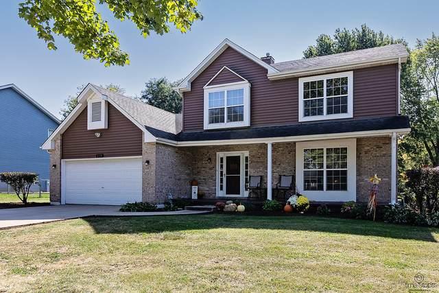 272 Bastian Drive, Sugar Grove, IL 60554 (MLS #11231064) :: John Lyons Real Estate