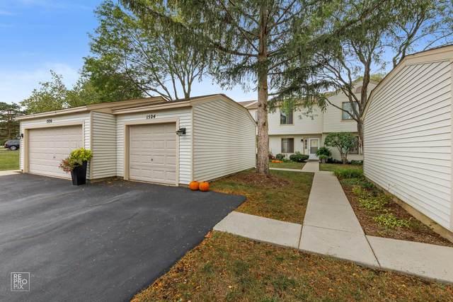 1524 Gibson Drive, Elk Grove Village, IL 60007 (MLS #11231563) :: John Lyons Real Estate
