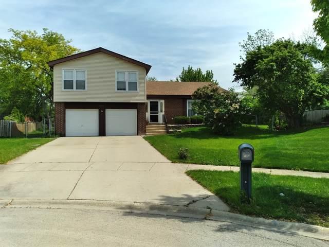 266 Bryant Way, Bolingbrook, IL 60440 (MLS #11231687) :: John Lyons Real Estate