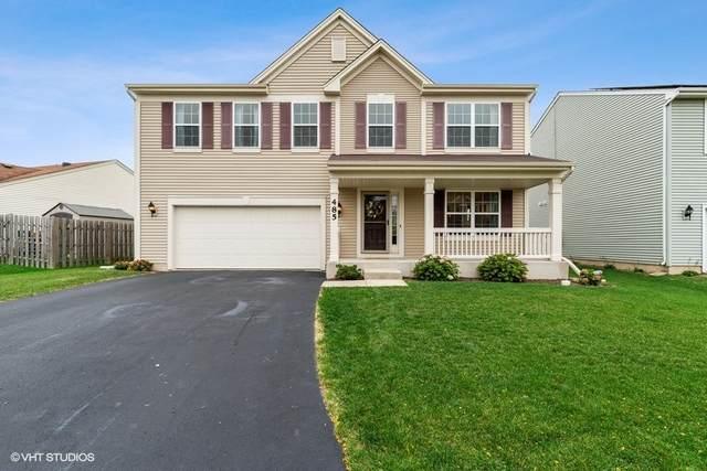 485 Niagara Drive, Volo, IL 60073 (MLS #11232103) :: Carolyn and Hillary Homes