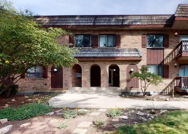 7920 Woodglen Lane #206, Downers Grove, IL 60516 (MLS #11232233) :: John Lyons Real Estate