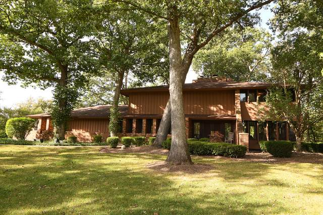 649 Pheasant Trail, Frankfort, IL 60423 (MLS #11232615) :: The Wexler Group at Keller Williams Preferred Realty