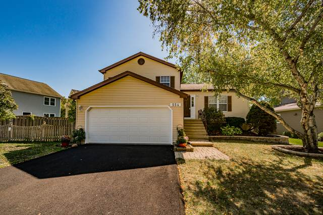 554 Roxbury Drive, Naperville, IL 60565 (MLS #11233166) :: John Lyons Real Estate