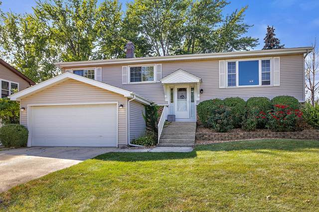 20106 S Sycamore Drive, Frankfort, IL 60423 (MLS #11233236) :: Littlefield Group