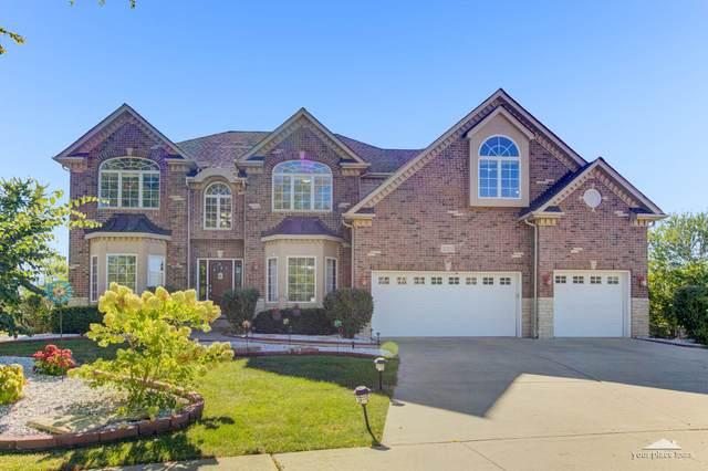 325 White Pines Lane, Oswego, IL 60543 (MLS #11233254) :: The Wexler Group at Keller Williams Preferred Realty
