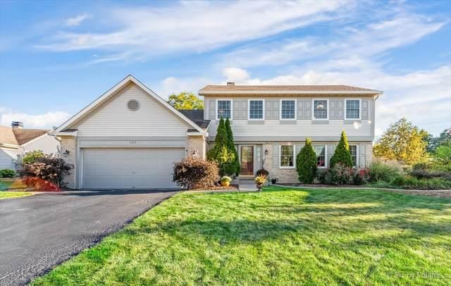 1353 Paddock Place, Bartlett, IL 60103 (MLS #11233306) :: John Lyons Real Estate