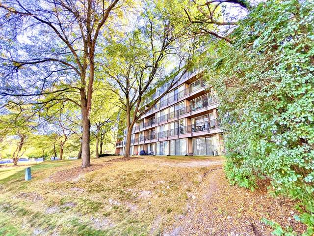 5810 N Oakwood Drive 4C, Lisle, IL 60532 (MLS #11233332) :: John Lyons Real Estate