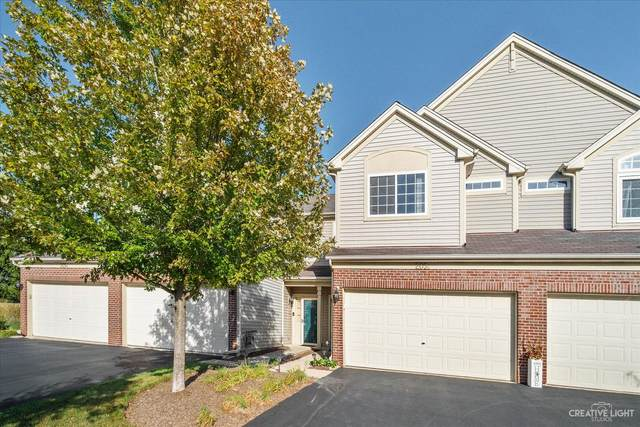 205 Courtland Drive C, South Elgin, IL 60177 (MLS #11233479) :: Littlefield Group