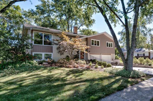 12 Tamarack Avenue, Naperville, IL 60540 (MLS #11233623) :: The Wexler Group at Keller Williams Preferred Realty
