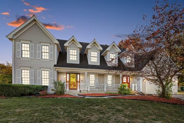 36254 N Field View Drive, Gurnee, IL 60031 (MLS #11233805) :: John Lyons Real Estate