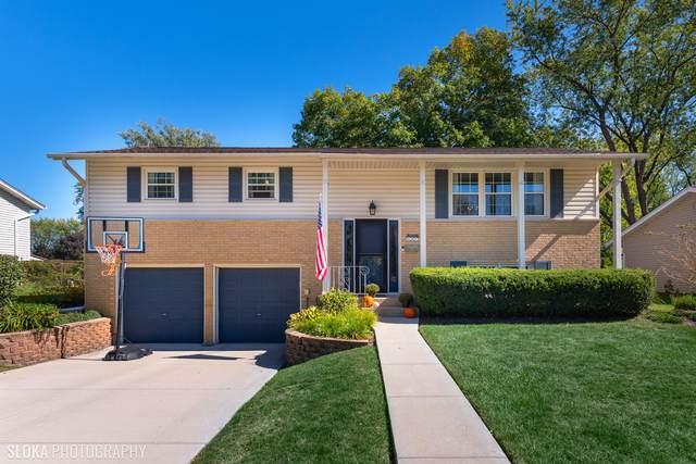 507 N Williams Drive, Palatine, IL 60074 (MLS #11234061) :: John Lyons Real Estate