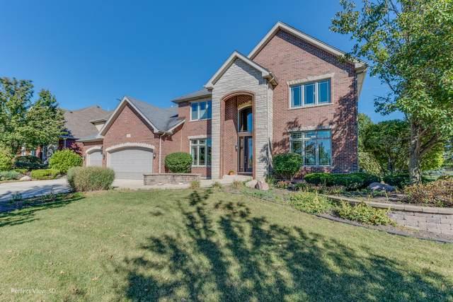 22017 Mary Drive, Frankfort, IL 60423 (MLS #11234380) :: John Lyons Real Estate