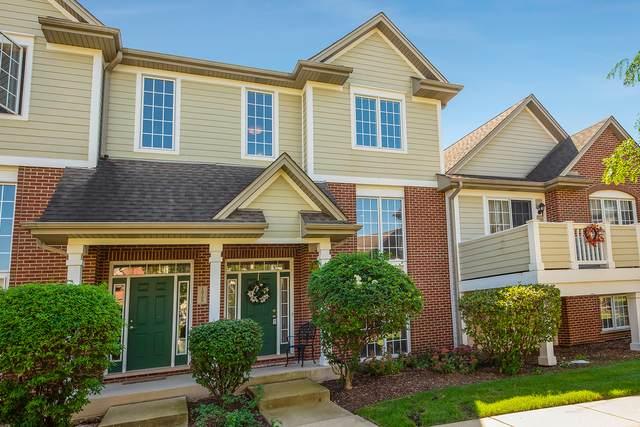 10702 Gabrielle Lane, Orland Park, IL 60462 (MLS #11234442) :: John Lyons Real Estate