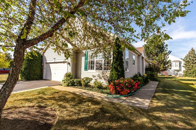 23 W Hague Drive, Antioch, IL 60002 (MLS #11234445) :: John Lyons Real Estate