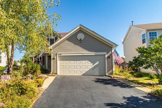 268 Alpine Drive, Gilberts, IL 60136 (MLS #11234461) :: Littlefield Group