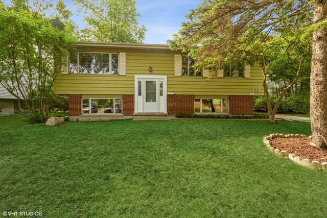 219 Hickory Street, Park Forest, IL 60466 (MLS #11234464) :: Littlefield Group
