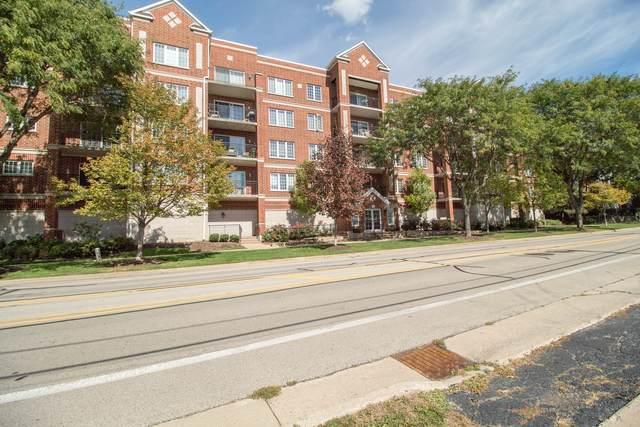 124 W Colfax Street #205, Palatine, IL 60067 (MLS #11234689) :: Littlefield Group