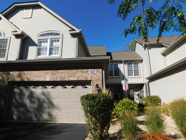 1527 Orchard Circle, Naperville, IL 60565 (MLS #11234792) :: Littlefield Group