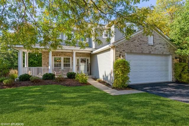 1036 Wrens Gate, Mundelein, IL 60060 (MLS #11234823) :: Littlefield Group