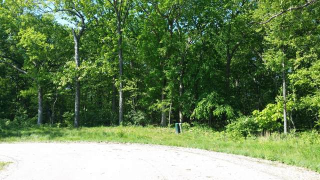 Lot 12 Autumn Ridge Court, Crystal Lake, IL 60014 (MLS #11234946) :: Rossi and Taylor Realty Group