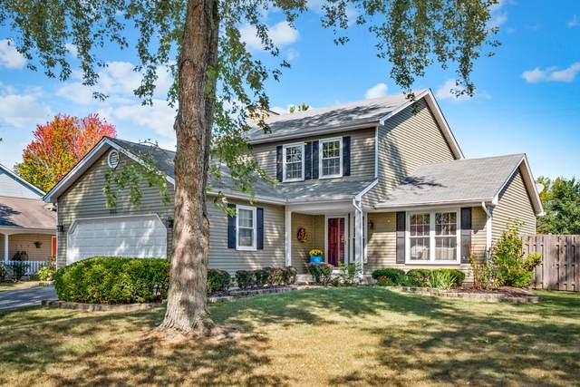 385 Pearson Circle, Naperville, IL 60563 (MLS #11234963) :: Littlefield Group