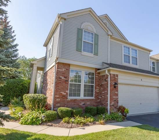 6 Riverdale Court, Algonquin, IL 60102 (MLS #11235051) :: John Lyons Real Estate
