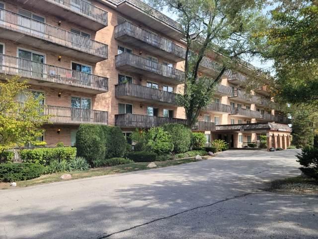 512 Redondo Drive #301, Downers Grove, IL 60515 (MLS #11235128) :: John Lyons Real Estate