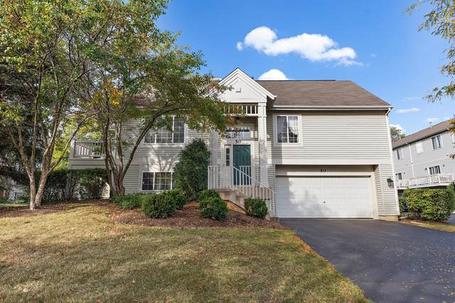 50 New Haven Drive #50, Cary, IL 60013 (MLS #11235203) :: Littlefield Group