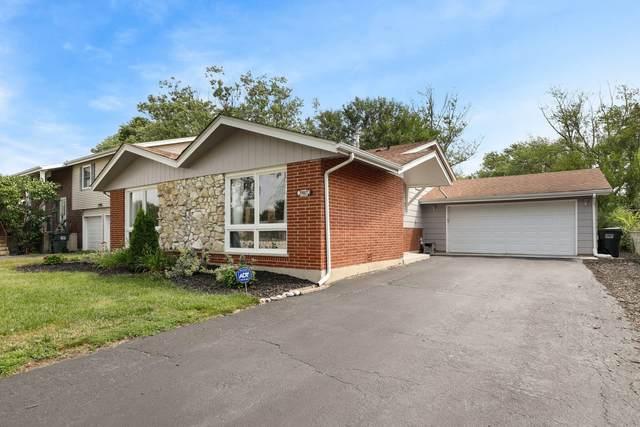 18927 Center Avenue, Homewood, IL 60430 (MLS #11235271) :: Littlefield Group