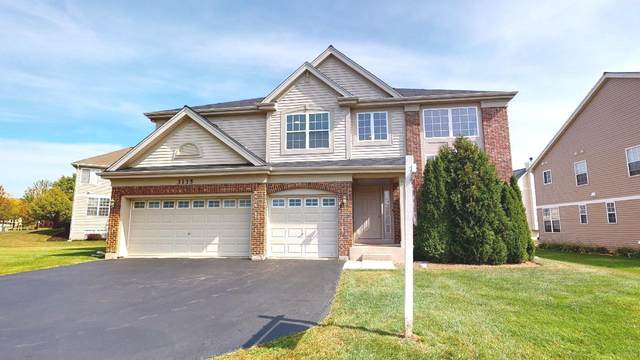 3135 Newport Lane, Wadsworth, IL 60083 (MLS #11235386) :: The Wexler Group at Keller Williams Preferred Realty