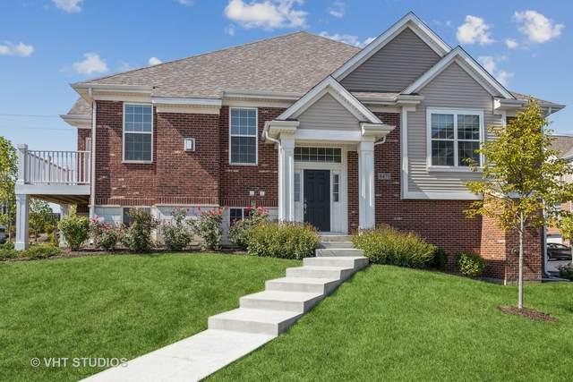 4471 Monroe Court, Naperville, IL 60564 (MLS #11235494) :: Littlefield Group