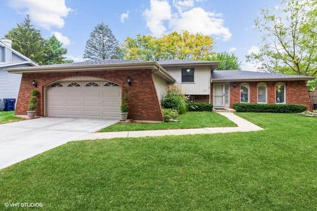 531 N Lyle Avenue, Elgin, IL 60123 (MLS #11235530) :: John Lyons Real Estate