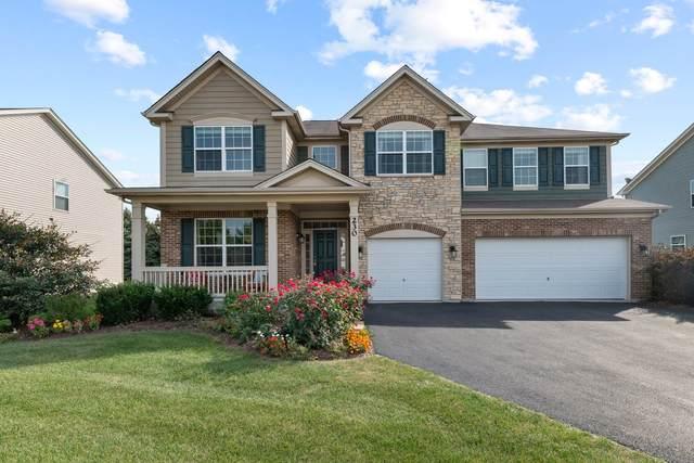 230 Julep Avenue, Oswego, IL 60543 (MLS #11235569) :: Littlefield Group