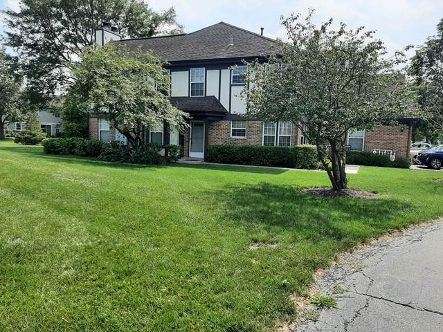 1218 Clearview Court, Buffalo Grove, IL 60089 (MLS #11235667) :: Littlefield Group