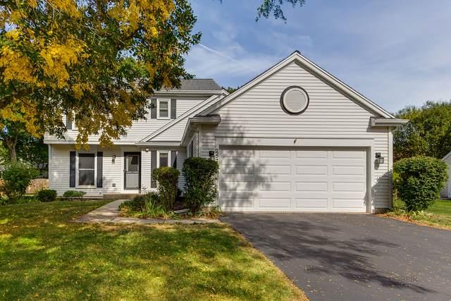 257 Pontiac Lane, Vernon Hills, IL 60061 (MLS #11235669) :: John Lyons Real Estate