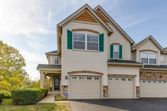 441 Bay Tree Circle, Vernon Hills, IL 60061 (MLS #11235781) :: Littlefield Group