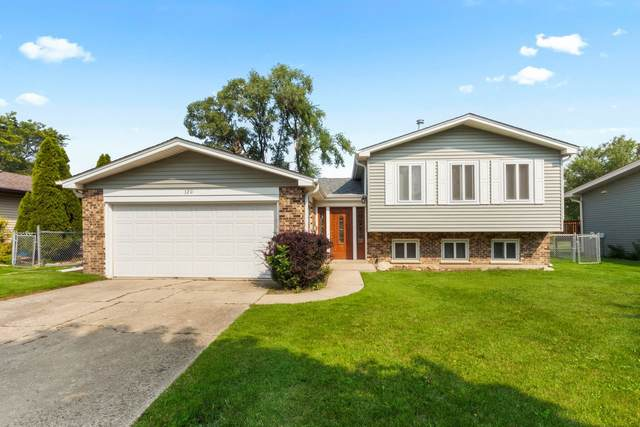 320 Cottonwood Court, Schaumburg, IL 60193 (MLS #11235829) :: The Wexler Group at Keller Williams Preferred Realty