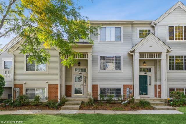 344 New Haven Drive #344, Cary, IL 60013 (MLS #11235887) :: Littlefield Group