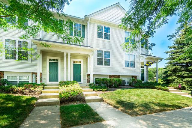 109 Terra Firma Lane #109, Volo, IL 60020 (MLS #11235922) :: The Wexler Group at Keller Williams Preferred Realty