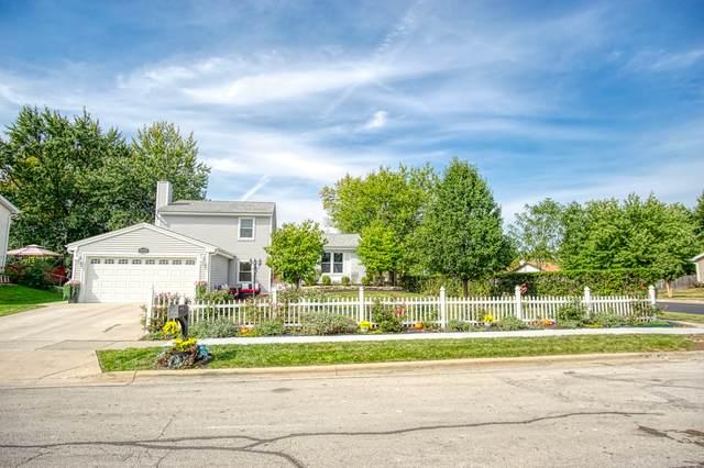 1940 Aspen Lane, Glendale Heights, IL 60139 (MLS #11236332) :: Littlefield Group