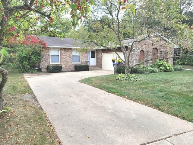 9821 W Marguerite Lane, Beach Park, IL 60099 (MLS #11236356) :: John Lyons Real Estate