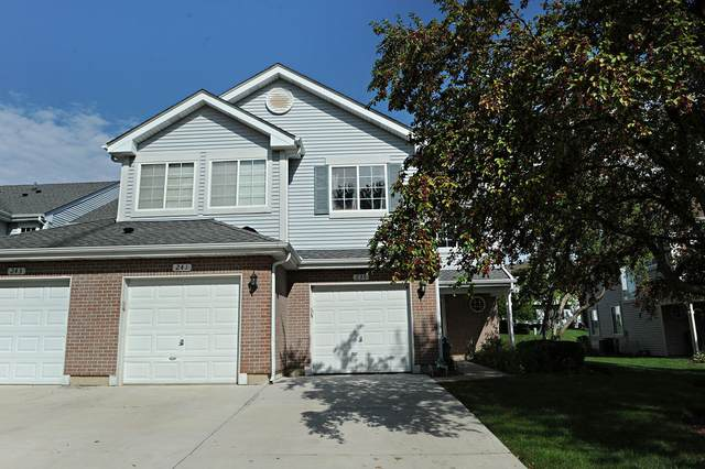 239 Sierra Pass Drive, Schaumburg, IL 60194 (MLS #11236468) :: John Lyons Real Estate