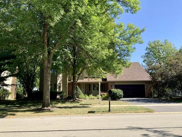 711 Torrington Drive, Naperville, IL 60565 (MLS #11236483) :: Littlefield Group