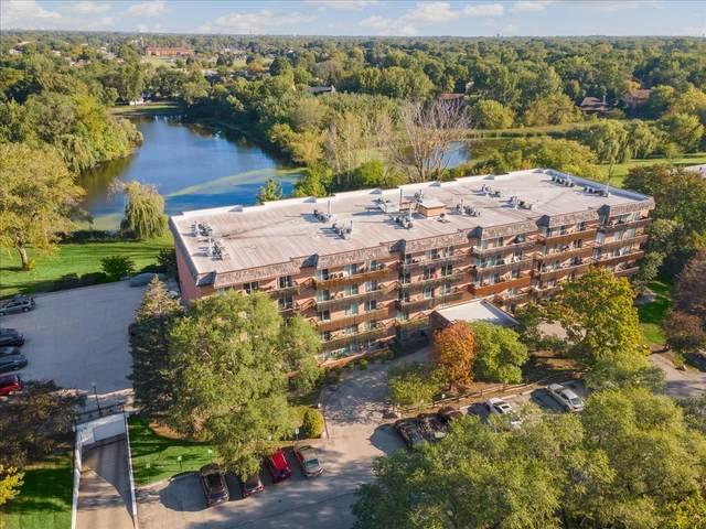502 Redondo Drive #305, Downers Grove, IL 60516 (MLS #11236530) :: John Lyons Real Estate